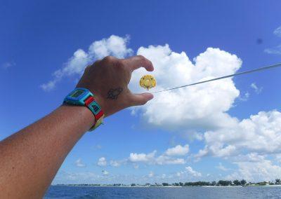 YOLO parasail2